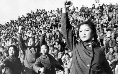 Rasaktivisternas egen kulturrevolution