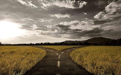 Borgerligheten och vägvalet