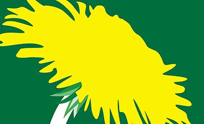 Symbolpolitikens gröna riddare
