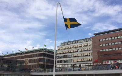 Den svenska paradoxen